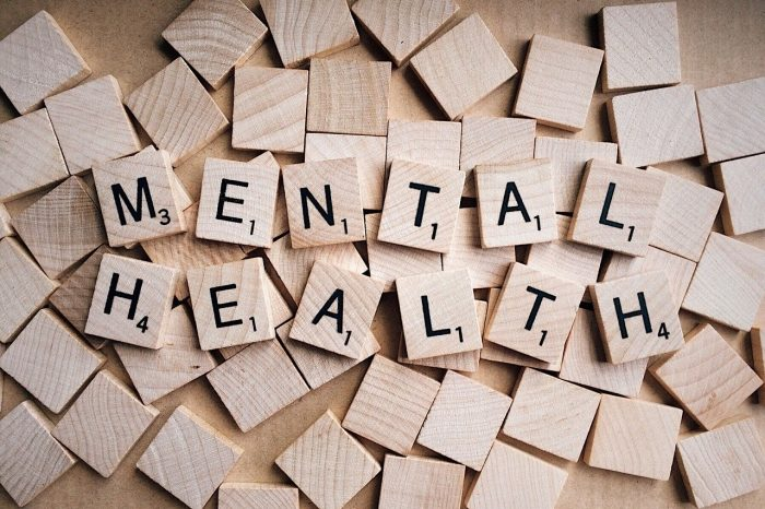 Image of Shannon Pawley mental health  on estate management asset protection law site